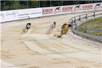 04_Chrti_dostihy_Greyhound_Racing_Park_Praha_Bookmakers_CuP_IMG_0024.jpg