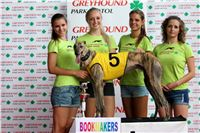05_Chrti_dostihy_Greyhound_Racing_Park_Praha_Bookmakers_CuP_IMG_0030.jpg