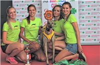 05_Chrti_dostihy_Greyhound_Racing_Park_Praha_Bookmakers_CuP_IMG_0045.jpg