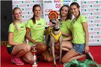 05_Chrti_dostihy_Greyhound_Racing_Park_Praha_Bookmakers_CuP_IMG_0050.jpg