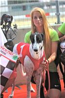 06_Chrti_dostihy_Greyhound_Racing_Park_Praha_Bookmakers_CuP_IMG_0063.jpg