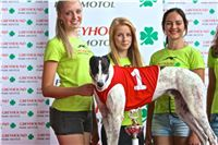 06_Chrti_dostihy_Greyhound_Racing_Park_Praha_Bookmakers_CuP_IMG_0095.jpg