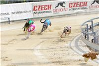 07_Chrti_dostihy_Greyhound_Racing_Park_Praha_Bookmakers_CuP_IMG_9922.jpg