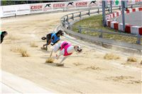 07_Chrti_dostihy_Greyhound_Racing_Park_Praha_Bookmakers_CuP_IMG_9926.jpg