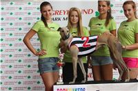 07_Chrti_dostihy_Greyhound_Racing_Park_Praha_Bookmakers_CuP_IMG_9963.jpg