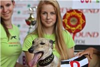 07_Chrti_dostihy_Greyhound_Racing_Park_Praha_Bookmakers_CuP_IMG_9978.jpg