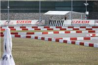 08_Chrti_dostihy_Greyhound_Racing_Park_Praha_Bookmakers_CuP_IMG_0117.jpg