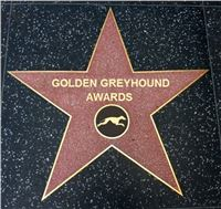 Chrti_Oskari_Golden_Greyhound_Awards_Park_Motol_Praha_media.jpg