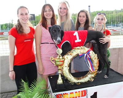 Chrt_dostihy_Greyhound_Racing_Prague_Grand_Prix (2).JPG