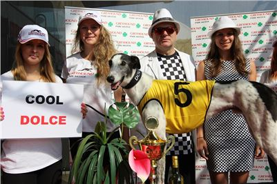Chrti_dostihy_winner_Greyhound_Company_Cup_Czech_Racing_Prague_CGDF (1).JPG